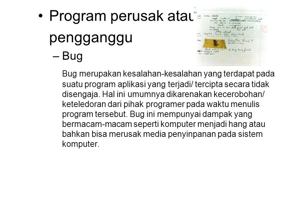 Program perusak atau pengganggu Bug