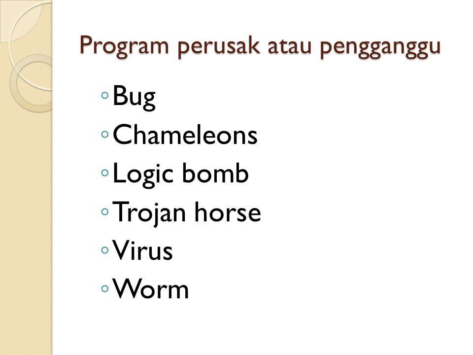 Program perusak atau pengganggu