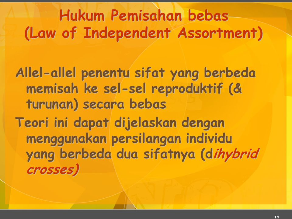 Hukum Pemisahan bebas (Law of Independent Assortment)