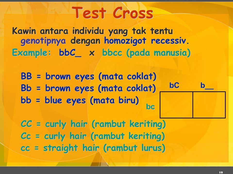 Test Cross Kawin antara individu yang tak tentu genotipnya dengan homozigot recessiv. Example: bbC_ x bbcc (pada manusia)