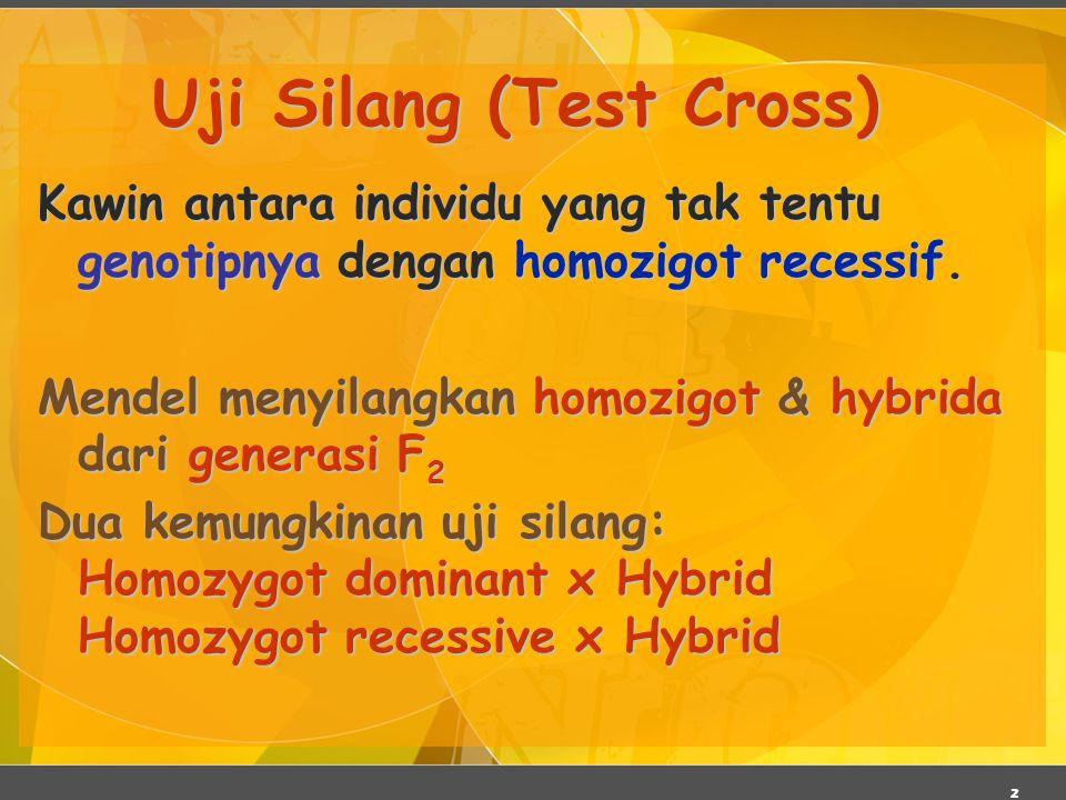 Uji Silang (Test Cross)