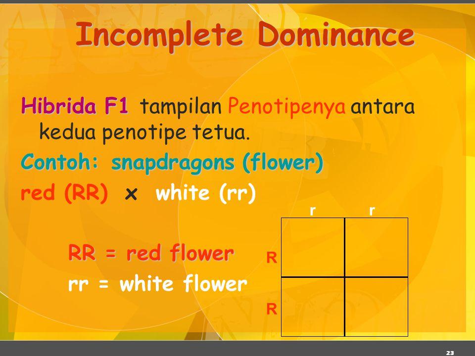 Incomplete Dominance Hibrida F1 tampilan Penotipenya antara kedua penotipe tetua. Contoh: snapdragons (flower)
