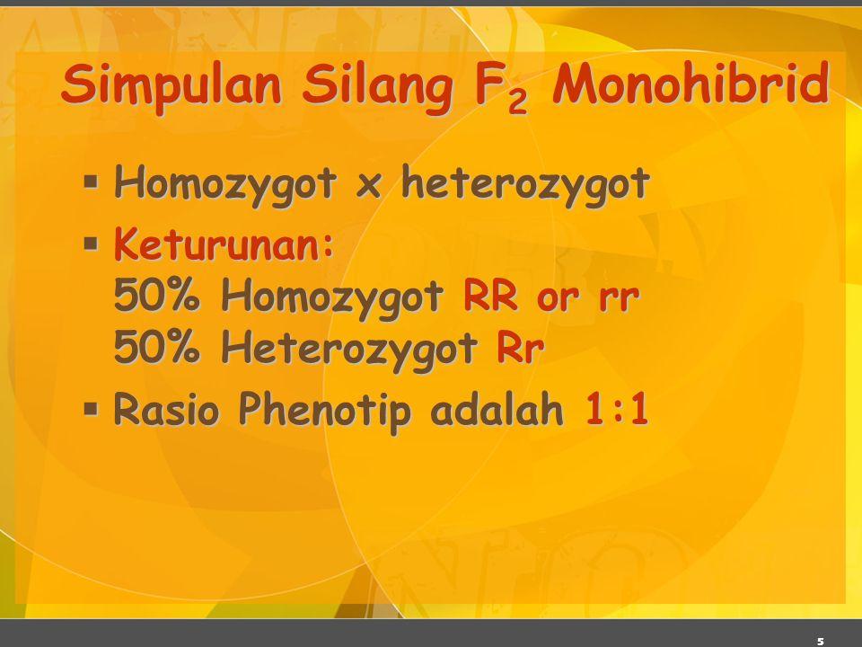 Simpulan Silang F2 Monohibrid