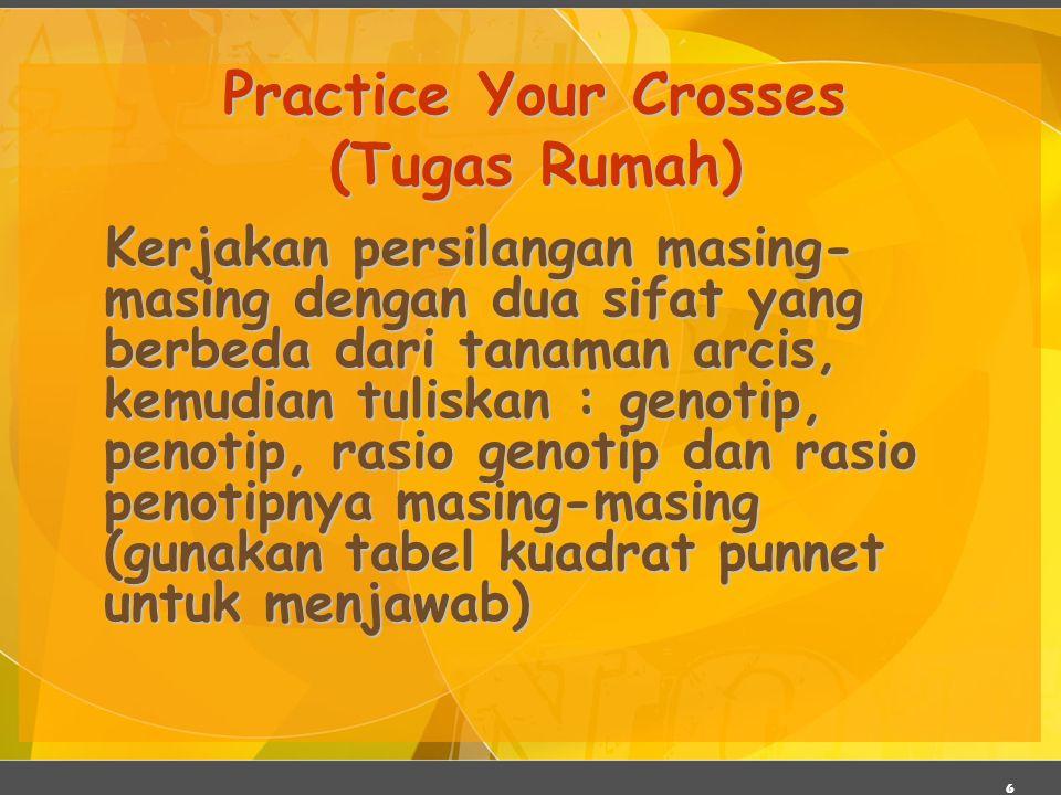 Practice Your Crosses (Tugas Rumah)