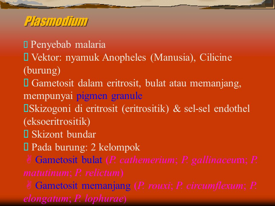 Plasmodium Ø Vektor: nyamuk Anopheles (Manusia), Cilicine (burung)