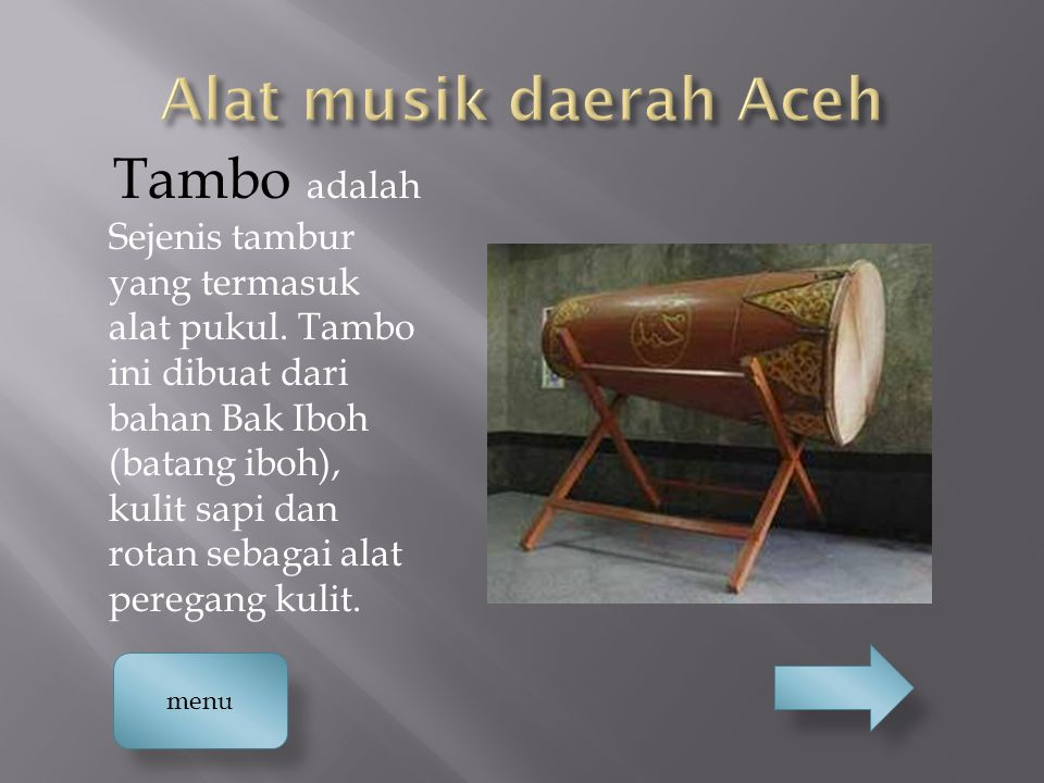 Alat musik daerah Aceh