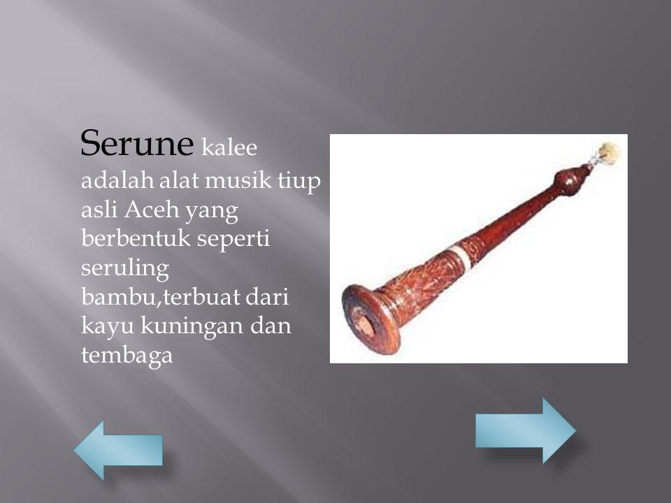 Serune kalee adalah alat musik tiup asli Aceh yang berbentuk seperti seruling bambu,terbuat dari kayu kuningan dan tembaga