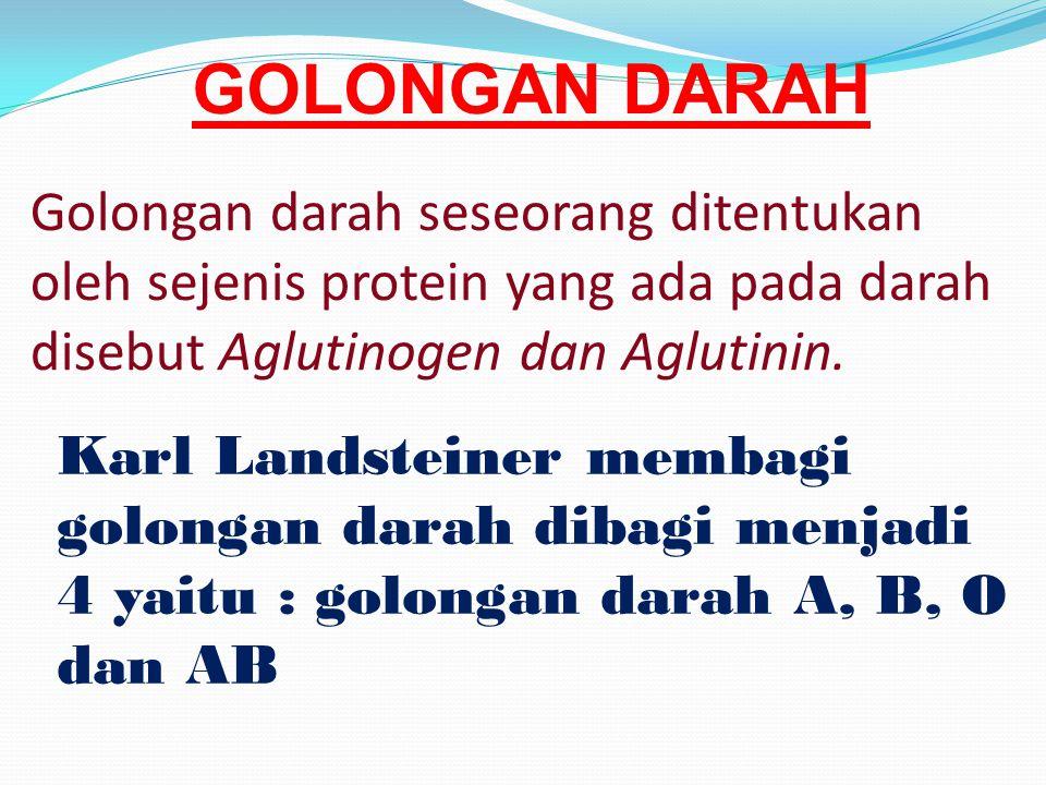 GOLONGAN DARAH Golongan darah seseorang ditentukan oleh sejenis protein yang ada pada darah disebut Aglutinogen dan Aglutinin.