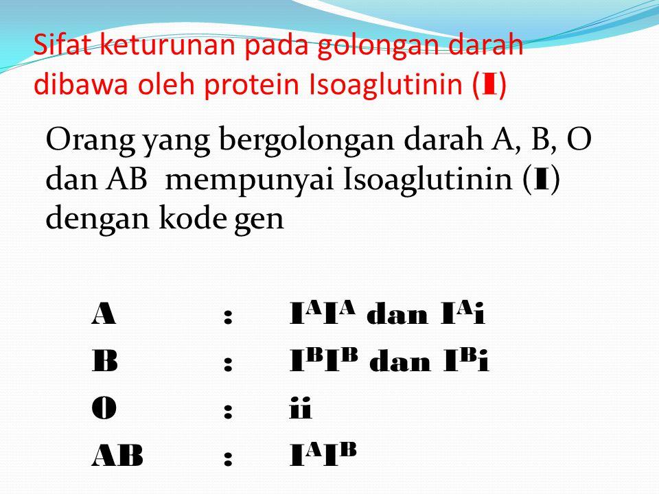 Sifat keturunan pada golongan darah dibawa oleh protein Isoaglutinin (I)