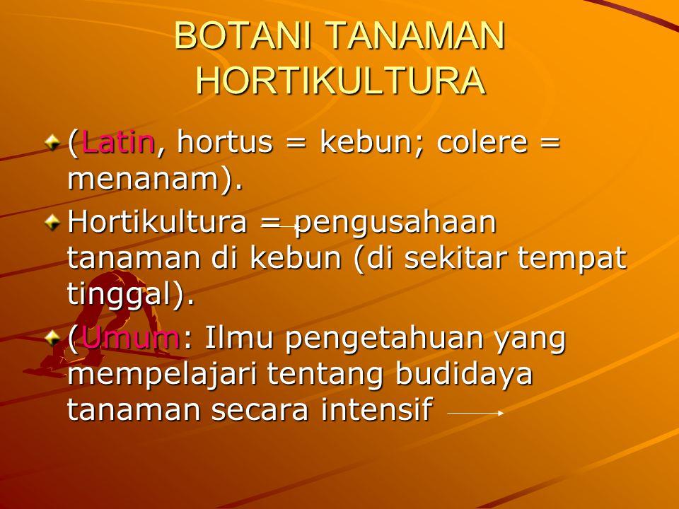 BOTANI TANAMAN HORTIKULTURA
