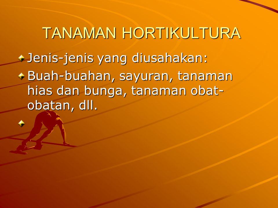 TANAMAN HORTIKULTURA Jenis-jenis yang diusahakan: