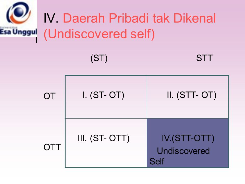 IV. Daerah Pribadi tak Dikenal (Undiscovered self)