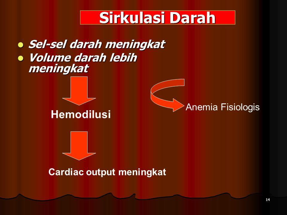 Sirkulasi Darah Sel-sel darah meningkat Volume darah lebih meningkat