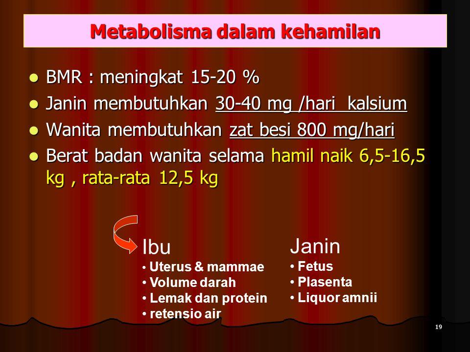 Metabolisma dalam kehamilan