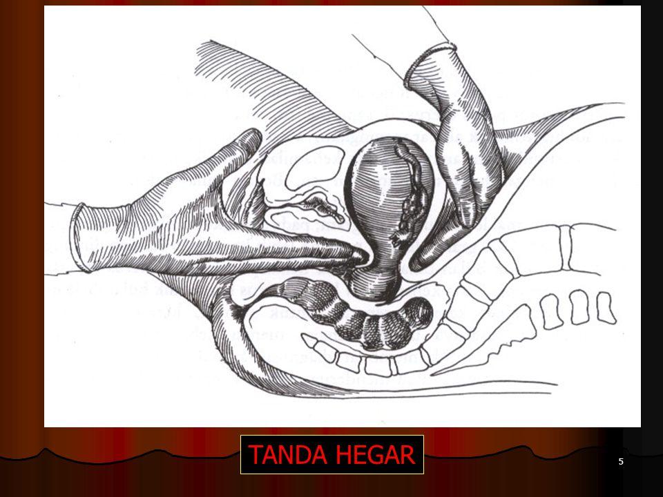 TANDA HEGAR
