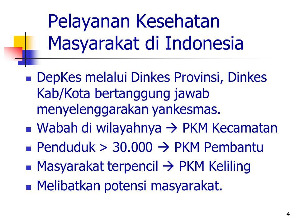 Pelayanan Kesehatan Masyarakat di Indonesia