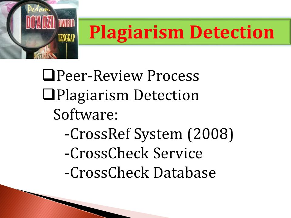 Plagiarism Detection Peer-Review Process