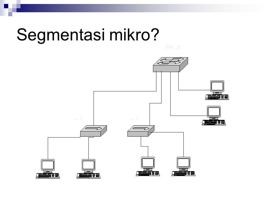 Segmentasi mikro