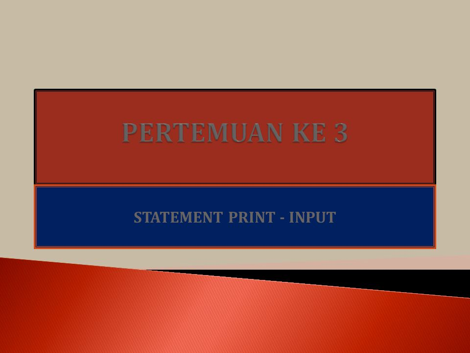 STATEMENT PRINT - INPUT