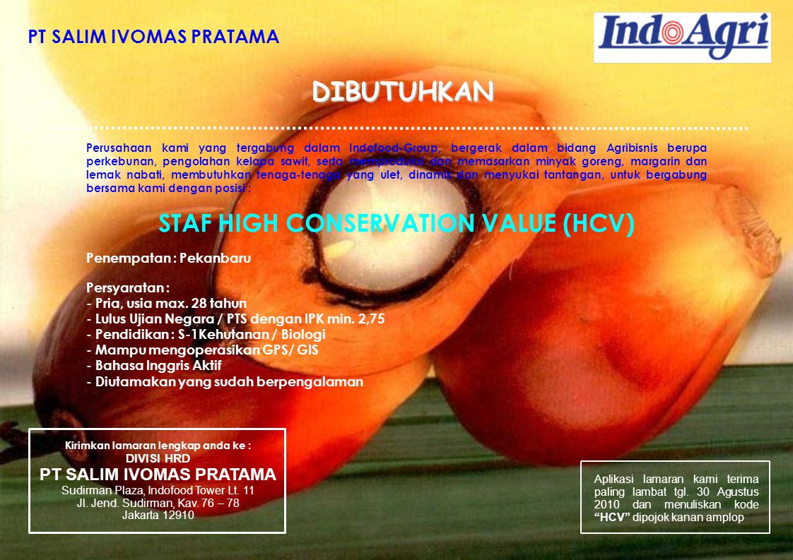 DIBUTUHKAN STAF HIGH CONSERVATION VALUE (HCV) PT SALIM IVOMAS PRATAMA
