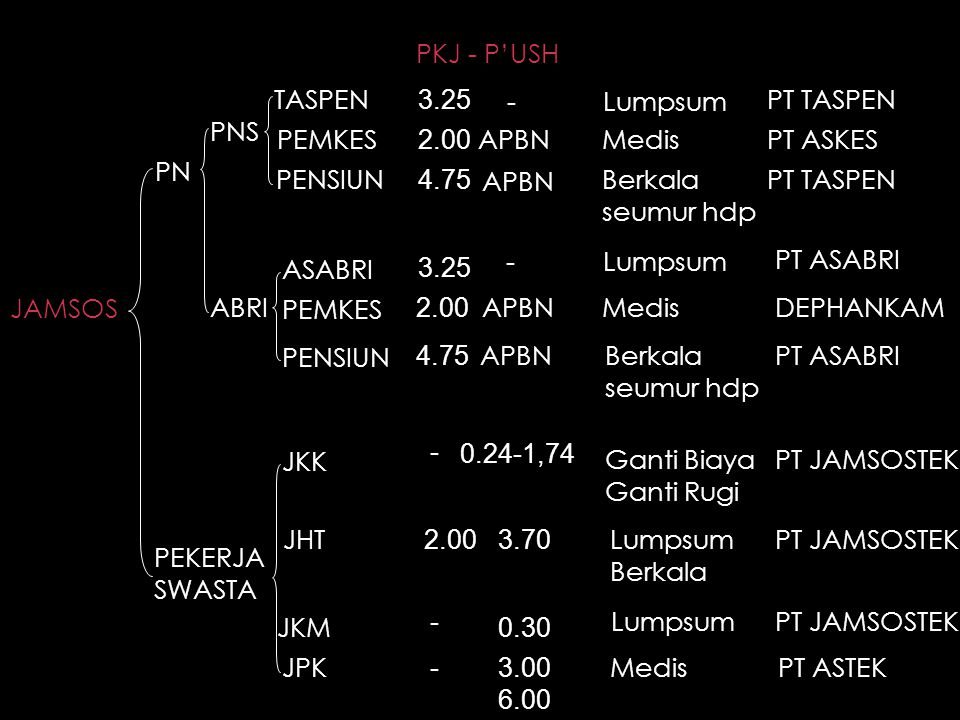 PKJ - P'USH TASPEN. 3.25. - Lumpsum. PT TASPEN. PNS. PEMKES. 2.00. APBN. Medis. PT ASKES.