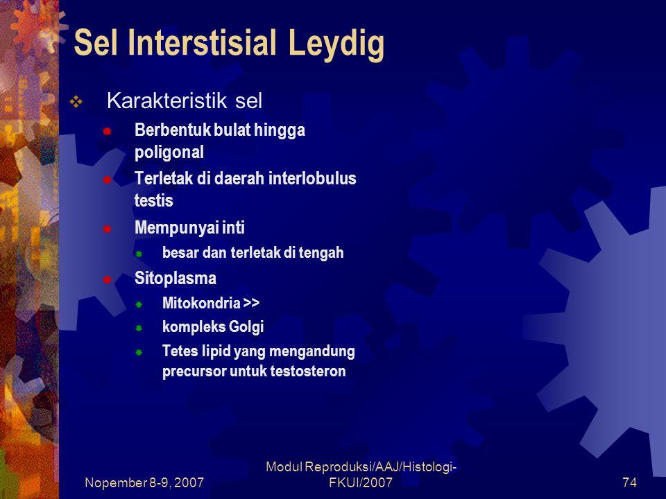 Sel Interstisial Leydig