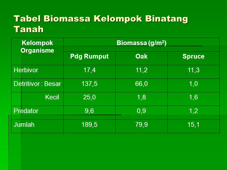 Tabel Biomassa Kelompok Binatang Tanah