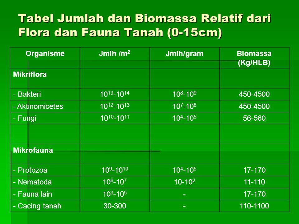 Tabel Jumlah dan Biomassa Relatif dari Flora dan Fauna Tanah (0-15cm)