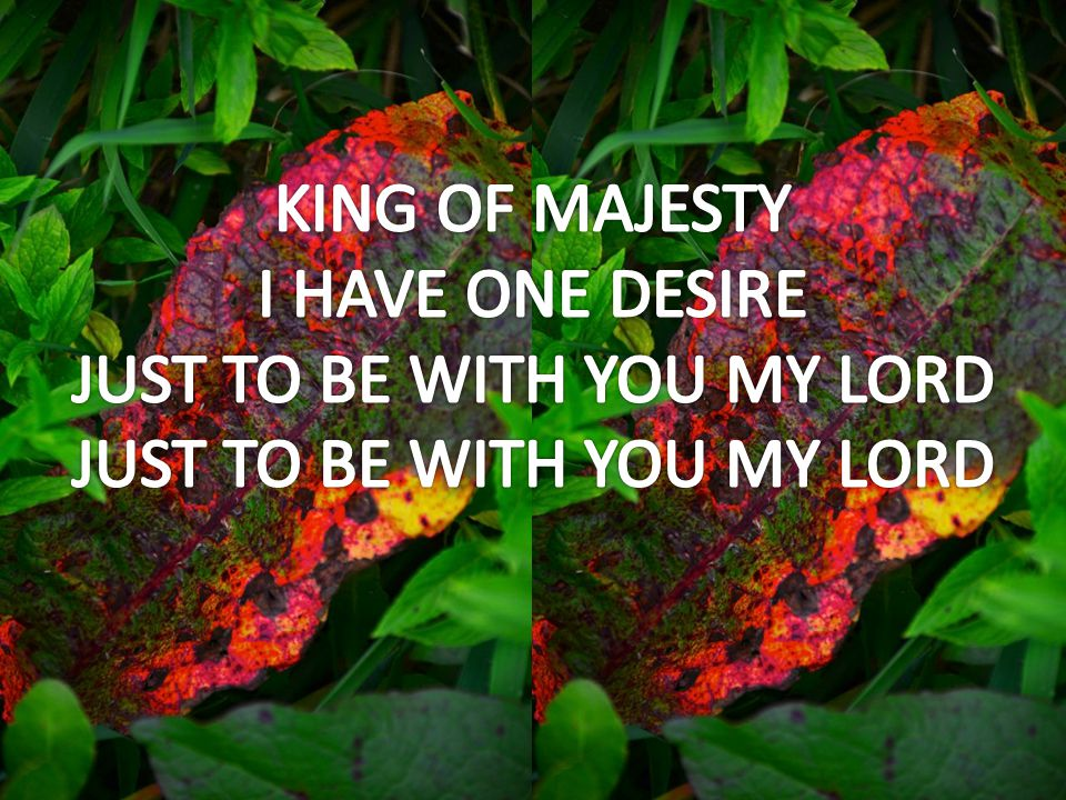 KING OF MAJESTY I HAVE ONE DESIRE JUST TO BE WITH YOU MY LORD JUST TO BE WITH YOU MY LORD