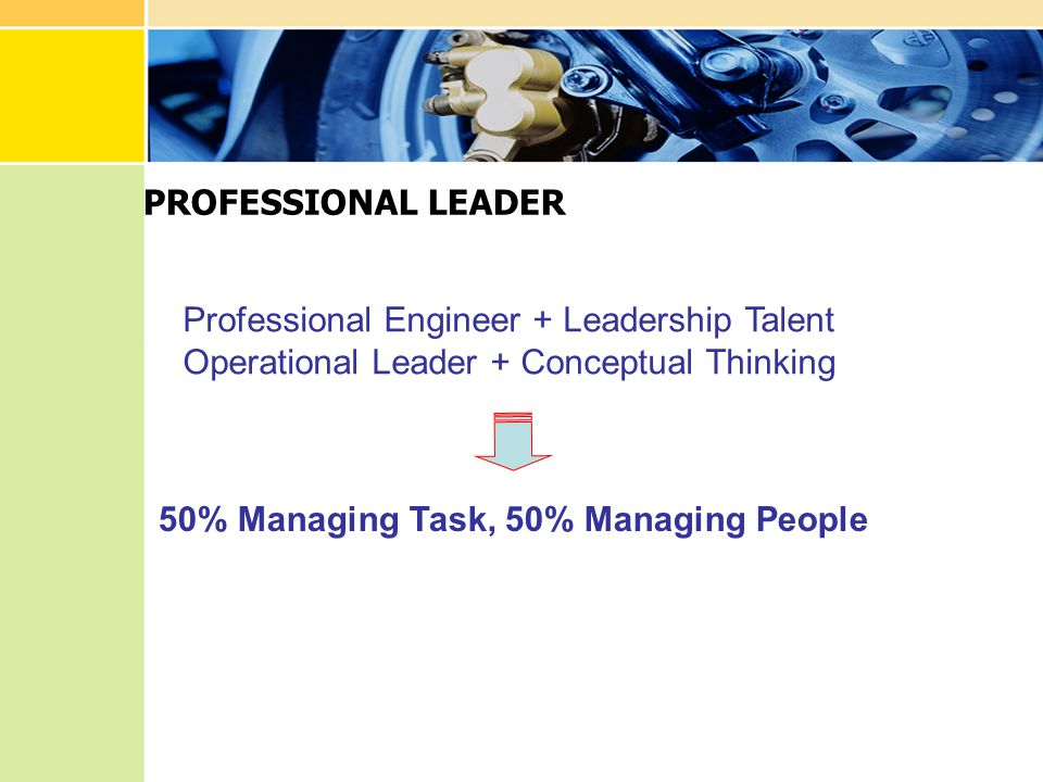 PROFESSIONAL LEADER Professional Engineer + Leadership Talent. Operational Leader + Conceptual Thinking.