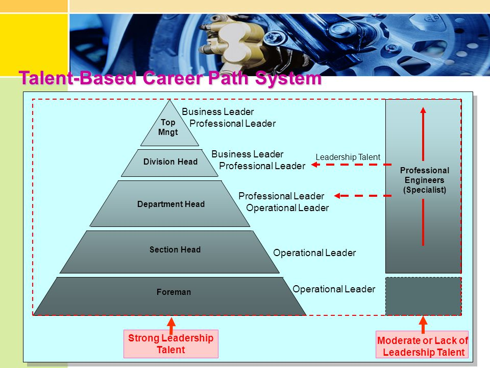 Talent-Based Career Path System