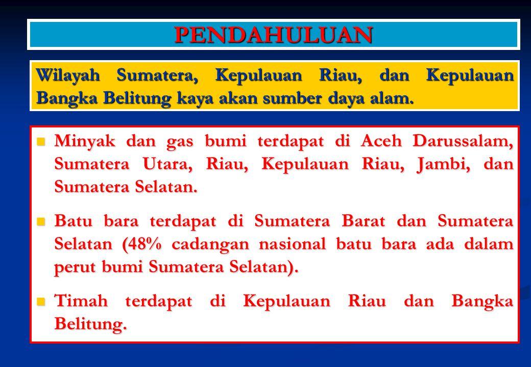 PENDAHULUAN Wilayah Sumatera, Kepulauan Riau, dan Kepulauan Bangka Belitung kaya akan sumber daya alam.