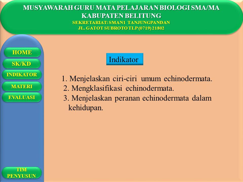 1. Menjelaskan ciri-ciri umum echinodermata.