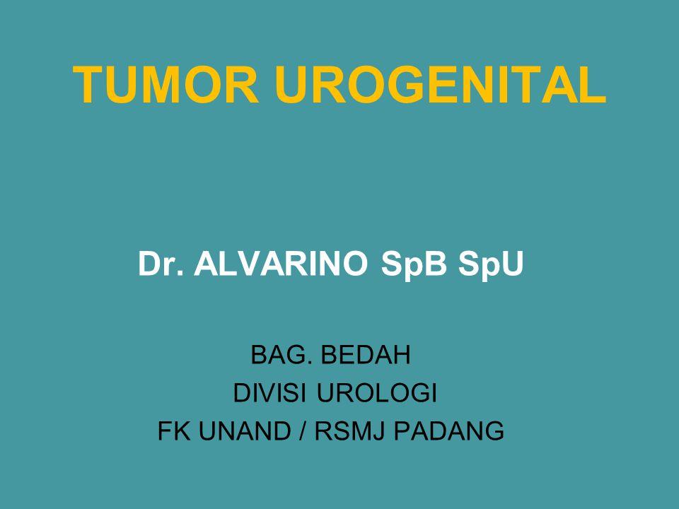 Dr. ALVARINO SpB SpU BAG. BEDAH DIVISI UROLOGI FK UNAND / RSMJ PADANG