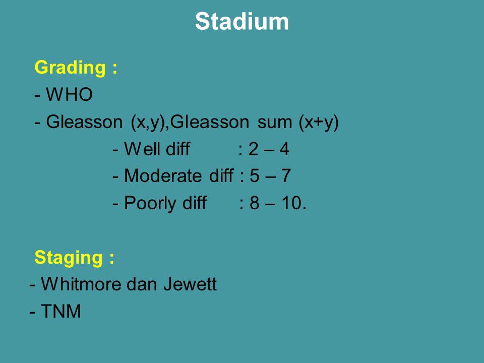 Stadium Grading : - WHO - Gleasson (x,y),Gleasson sum (x+y)