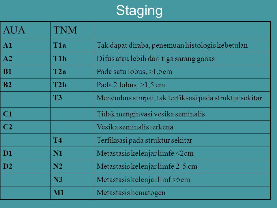 Staging AUA TNM A1 T1a Tak dapat diraba, penemuan histologis kebetulan