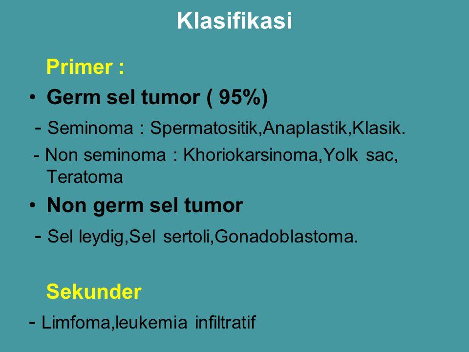 Klasifikasi Primer : Germ sel tumor ( 95%)