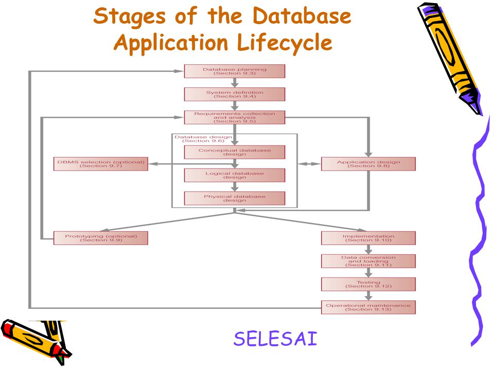 Stages of the Database Application Lifecycle