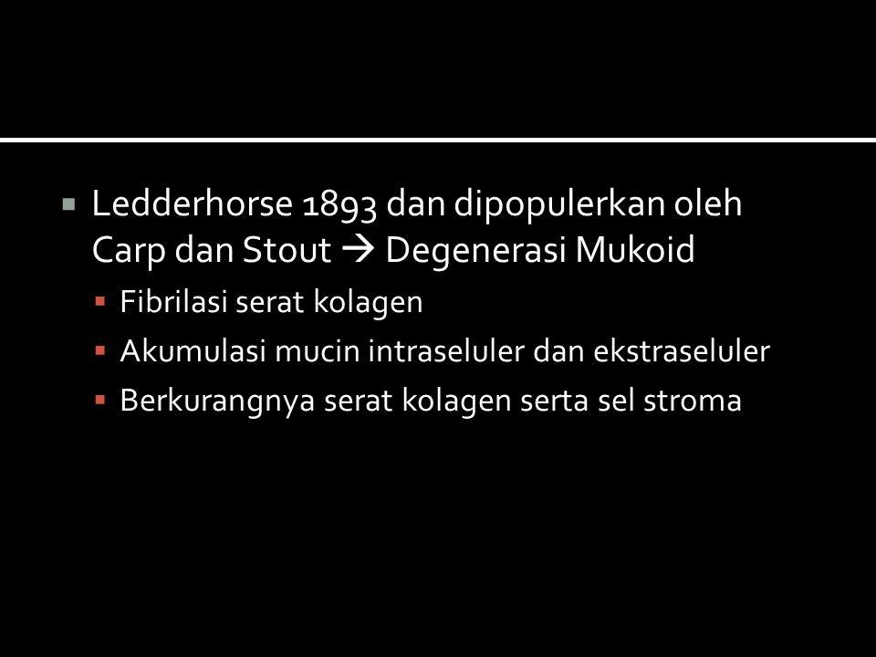 Ledderhorse 1893 dan dipopulerkan oleh Carp dan Stout  Degenerasi Mukoid