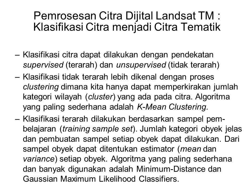Pemrosesan Citra Dijital Landsat TM : Klasifikasi Citra menjadi Citra Tematik