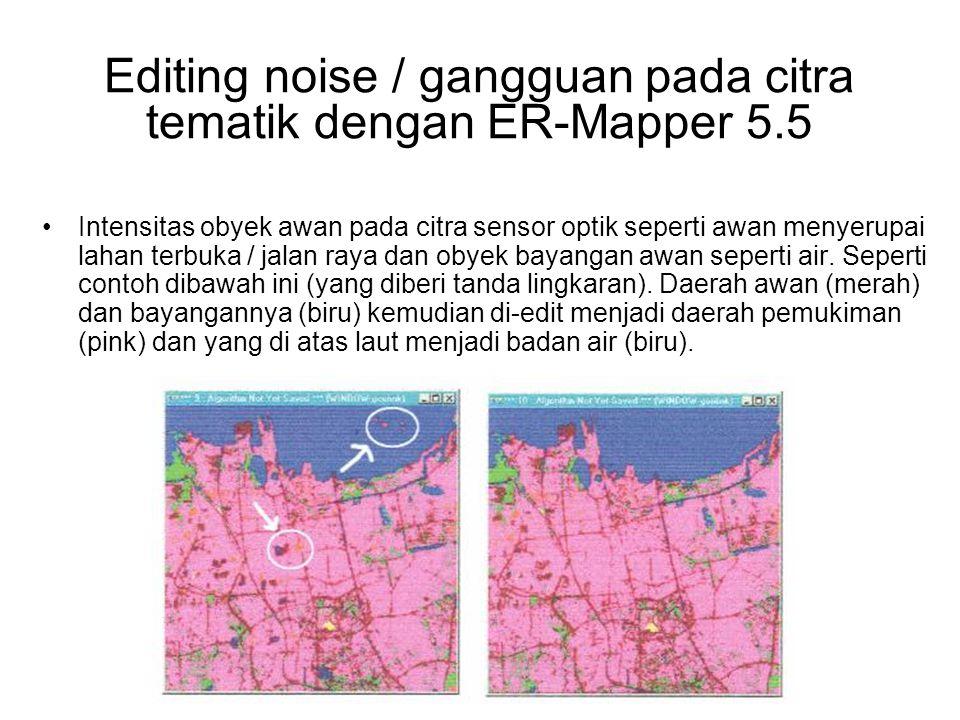 Editing noise / gangguan pada citra tematik dengan ER-Mapper 5.5