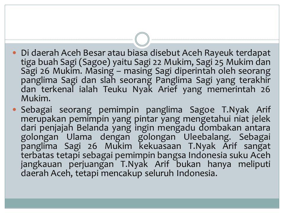 Di daerah Aceh Besar atau biasa disebut Aceh Rayeuk terdapat tiga buah Sagi (Sagoe) yaitu Sagi 22 Mukim, Sagi 25 Mukim dan Sagi 26 Mukim. Masing – masing Sagi diperintah oleh seorang panglima Sagi dan slah seorang Panglima Sagi yang terakhir dan terkenal ialah Teuku Nyak Arief yang memerintah 26 Mukim.