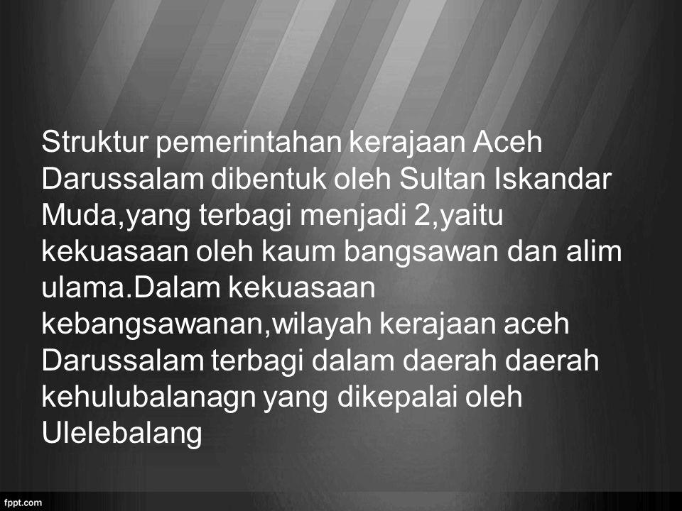 Struktur pemerintahan kerajaan Aceh Darussalam dibentuk oleh Sultan Iskandar Muda,yang terbagi menjadi 2,yaitu kekuasaan oleh kaum bangsawan dan alim ulama.Dalam kekuasaan kebangsawanan,wilayah kerajaan aceh Darussalam terbagi dalam daerah daerah kehulubalanagn yang dikepalai oleh Ulelebalang