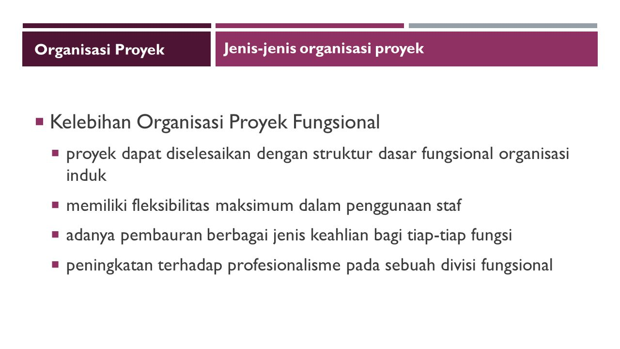 Kelebihan Organisasi Proyek Fungsional