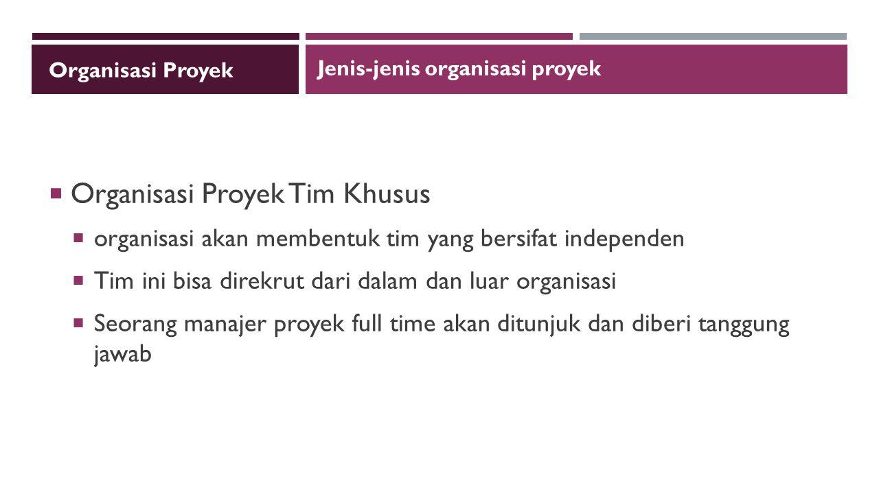 Organisasi Proyek Tim Khusus