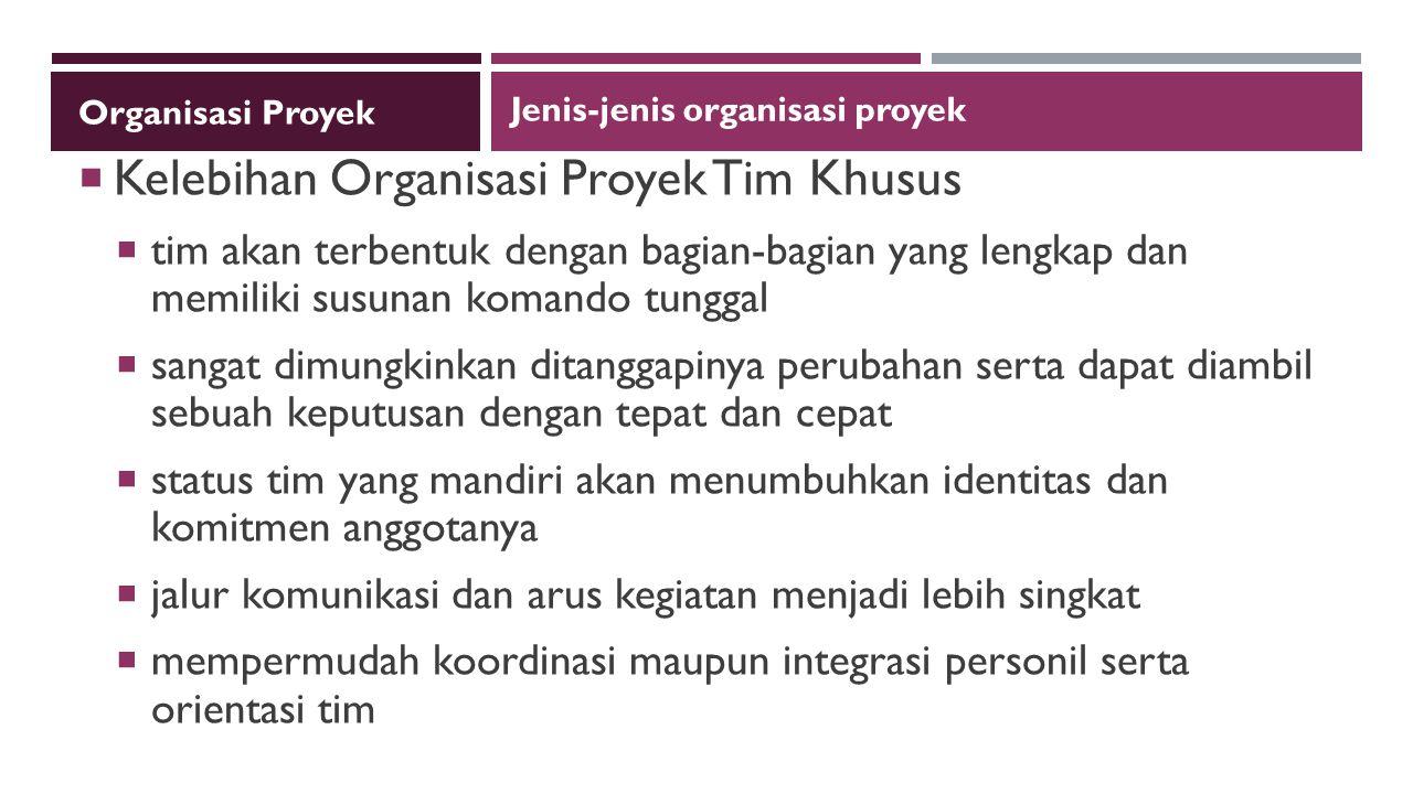 Kelebihan Organisasi Proyek Tim Khusus
