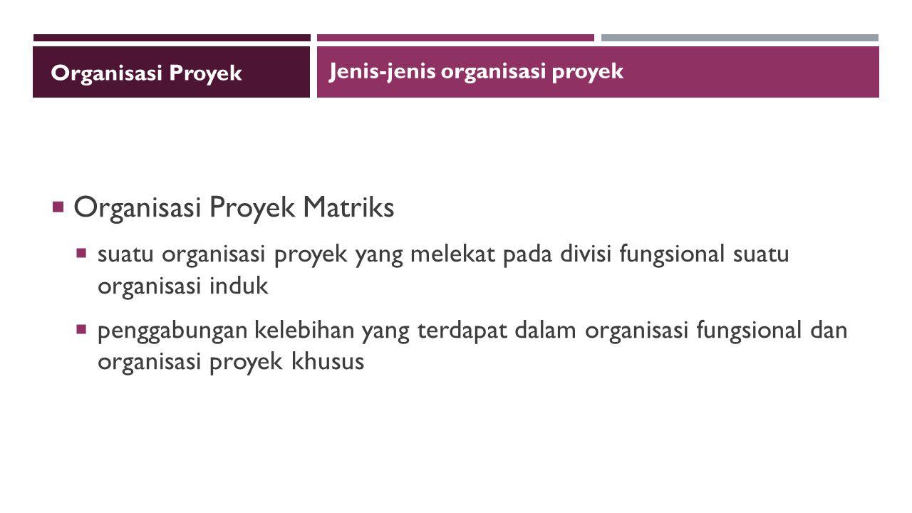 Organisasi Proyek Matriks