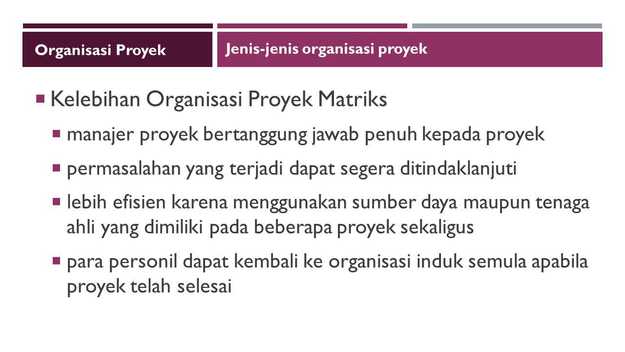 Kelebihan Organisasi Proyek Matriks