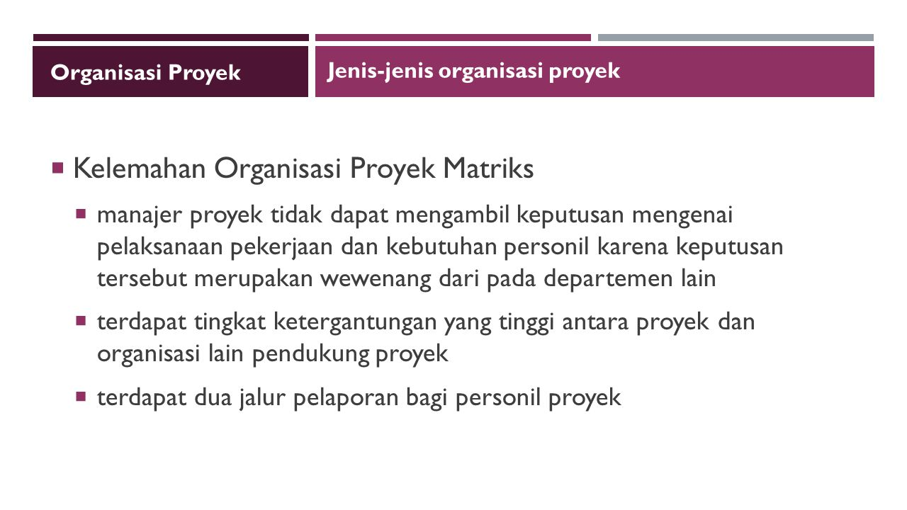Kelemahan Organisasi Proyek Matriks
