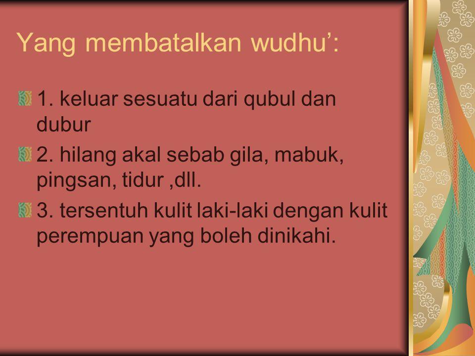 Yang membatalkan wudhu':